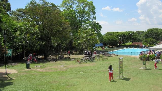 Zona verde piscina
